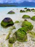 Pietre del mare sulle Seychelles Immagine Stock Libera da Diritti