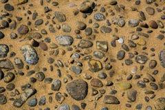 Pietre della spiaggia in sabbia Immagini Stock