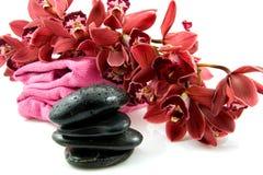 Pietre della stazione termale con l'orchidea rossa Immagini Stock Libere da Diritti