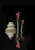 Pietre della stazione termale di zen e fiori rossi dell'iride Fotografie Stock Libere da Diritti