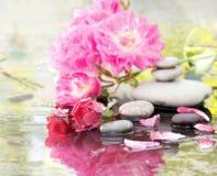 Pietre della stazione termale e una rosa in acqua immagini stock
