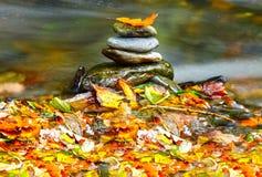 Pietre di autunno Fotografia Stock Libera da Diritti