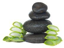 Pietre di massaggio con aloe vera Immagine Stock