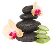 Pietre di massaggio con aloe vera Fotografie Stock Libere da Diritti