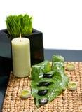 Pietre di zen con i fiori bianchi su una metallina dell'erba Immagini Stock Libere da Diritti