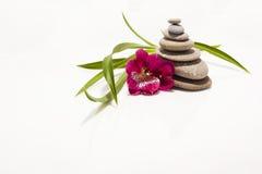 Pietre di zen con il fiore Fotografie Stock Libere da Diritti