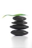 Pietre di zen con una felce Immagine Stock Libera da Diritti