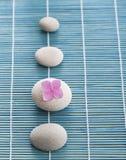 Pietre di zen e fiori rosa Fotografia Stock