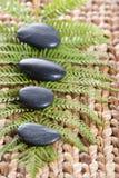 Pietre di zen su una stuoia dell'erba con una felce Fotografia Stock Libera da Diritti