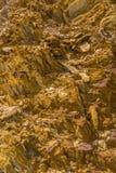 Pietre dorate: Queenstown Tasmania Fotografie Stock