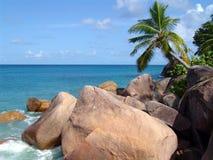 Pietre e palma del mare in spiaggia sulle Seychelles Fotografie Stock Libere da Diritti