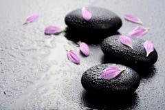 Pietre e petali della stazione termale Immagini Stock