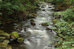 Pietre e rapide in fiume preannunciato immagine stock