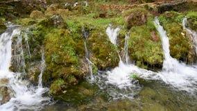 Pietre e rocce coperte da muschio lungo la corrente dell'acqua che attraversa foresta verde video d archivio
