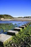 Pietre facenti un passo ad una baia di tre scogliere, Galles Fotografie Stock Libere da Diritti