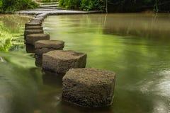 Pietre facenti un passo Boxhill, Surrey, Inghilterra g Fotografia Stock Libera da Diritti