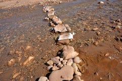 Pietre facenti un passo sopra il fiume Fotografia Stock Libera da Diritti
