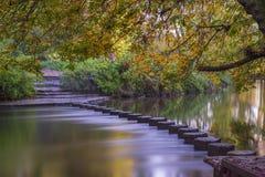 Pietre facenti un passo sopra la talpa del fiume, Surrey, Regno Unito Fotografia Stock
