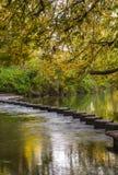 Pietre facenti un passo sopra la talpa del fiume, Surrey, Regno Unito Fotografie Stock