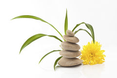 Pietre gialle di zen e del fiore Immagine Stock