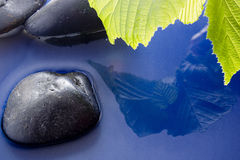 Pietre liscie in acqua Immagini Stock Libere da Diritti