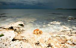 pietre Marino lucidate Fotografia Stock Libera da Diritti