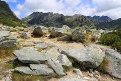 Pietre in montagne, Tatras in Slovacchia immagine stock libera da diritti