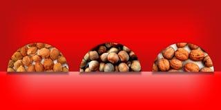 Pietre, nocciole e noci dell'albicocca dentro tre semicerchi Fotografie Stock Libere da Diritti