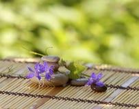 Pietre per la stazione termale ed i fiori blu scuro fotografie stock libere da diritti