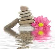 Pietre stazione termale/di zen con i fiori Immagini Stock Libere da Diritti