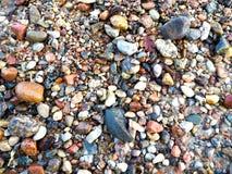 Pietre sulla spiaggia del Mar Baltico Fotografia Stock