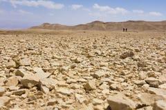 Pietre a terra del deserto Fotografie Stock