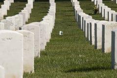 Pietre tombali militari bianche immagine stock