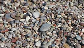 Pietre variopinte costiere del mare bagnato Fotografie Stock