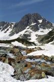 Pietrele stream. And Bucura II Peak from Retezat Mountains - National Park Stock Image