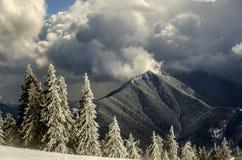 Pietrosul Bistritei Peak Royalty Free Stock Photography