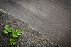 Pietruszka opuszcza na zmrok polerującym kamieniu z nieregularnym przełamem Przeciw tłu heban zdjęcie stock