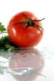 pietruszka pomidor Obrazy Stock