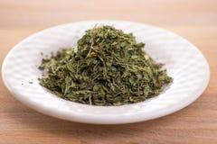 Pietruszki ziele Obrazy Stock