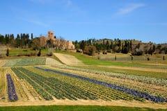 Pieve di San Giovanny Battista (Italia) Fotografie Stock