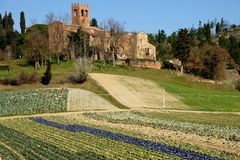 Pieve di San Giovanny Battista (Italia) Immagine Stock Libera da Diritti