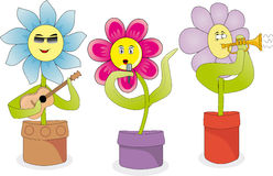 Śpiewaccy kwiaty Zdjęcie Royalty Free