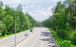 Pieza de la autopista con el bosque en ambos lados en verano Fotografía de archivo libre de regalías