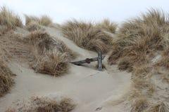 Pieza de la cerca de madera en las dunas fotografía de archivo