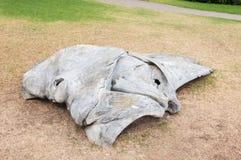 Pieza de un esqueleto de la ballena Fotos de archivo