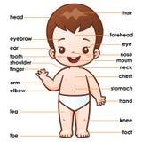 Pieza del vocabulario stock de ilustración