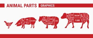 Piezas animales - gráficos stock de ilustración