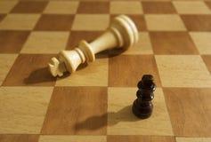 Piezas de ajedrez en una tarjeta de ajedrez Fotos de archivo libres de regalías