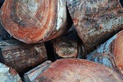 Piezas del cortador de maderas en pequeños pedazos ilustración del vector