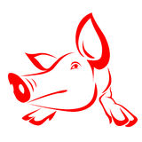 Pig. Red pig on a white background Stock Photography